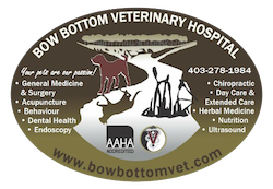 Bow Bottom Veterinary Hospital | Your local Vet in South Calgary, Alberta